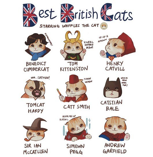 british actors, cats