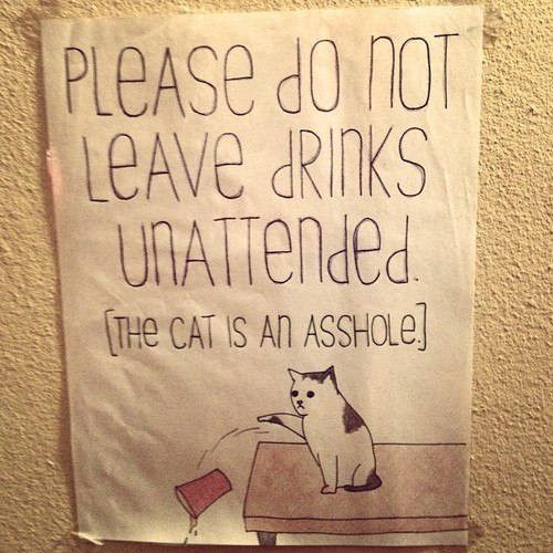 lol pics, funny signs