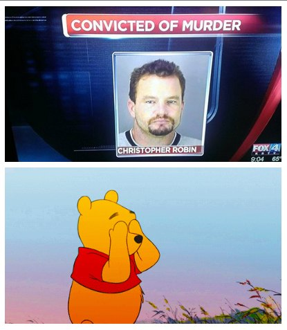 funny pics, Vinnie the Pooh humor