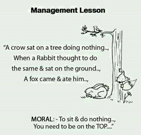 funny pics, management jokes