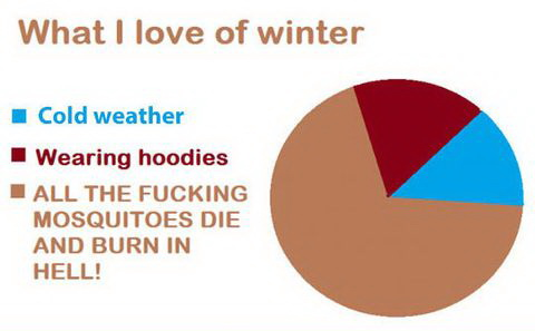 funny pics, why i love winter