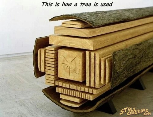 how tree trunk is used