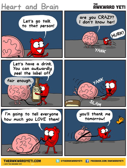 funny pics, lol pics, heart vs brain humor,