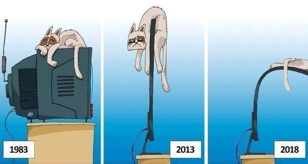funny pics, lol pics, evolution of tv