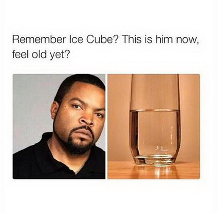 funny pics, lol pics, ice cube jokes