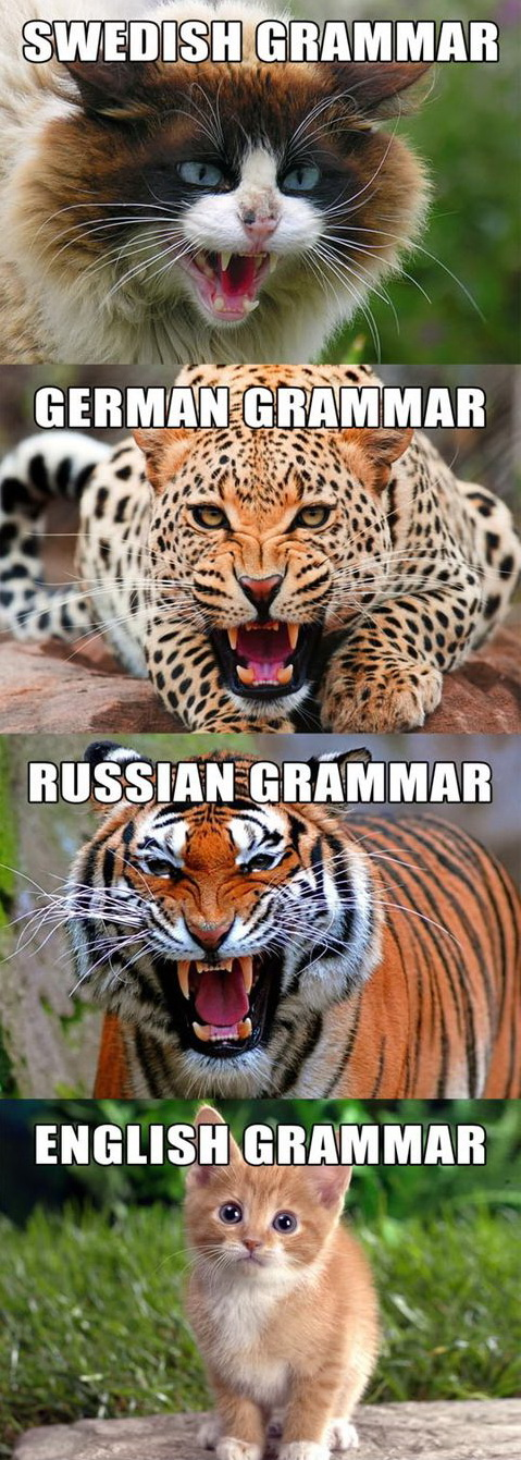 funny pics, languages difference, grammar