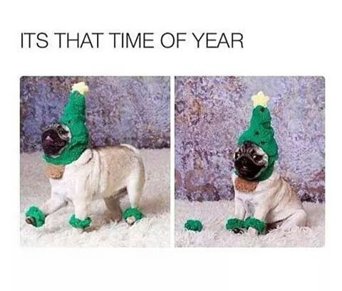 It's That Time Of The Year