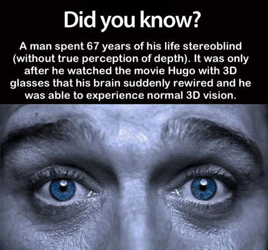 interesting facts,did you know