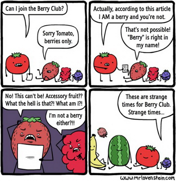 funny comics, lol pics, berry club