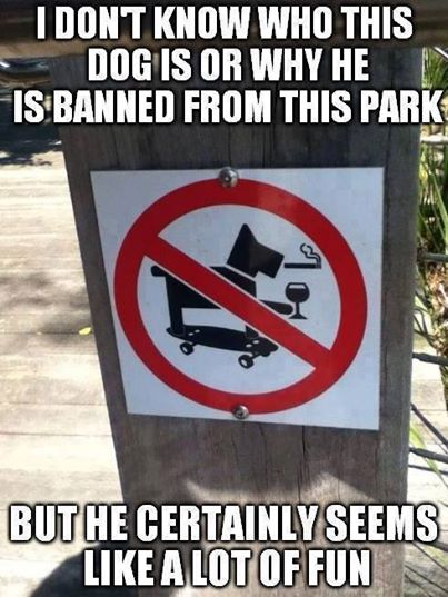 funny signs, lol pics, funny pics, dogs humor