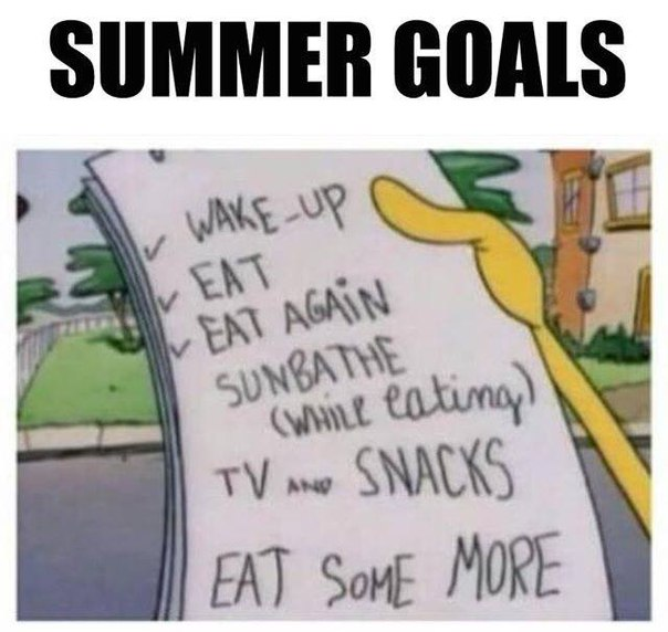 summer goals, funny pics, lol pics