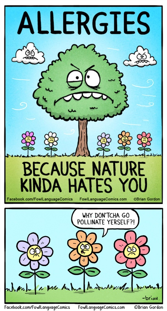 funny pics, nature humor, allergies humor, lol