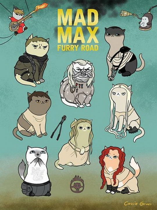 cats, cat comics, lol, mad max furry road