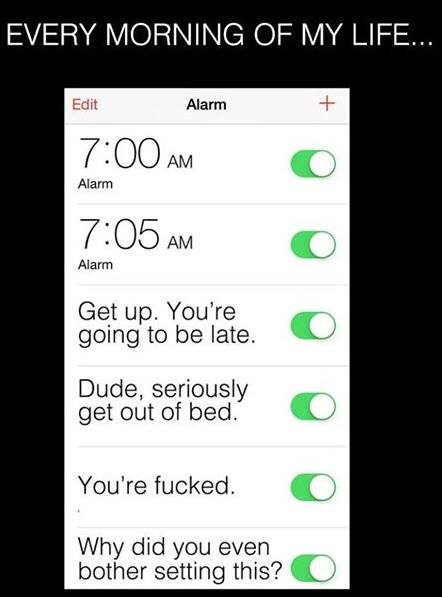 mornings humor, alarm clock humor, funny pics, lol