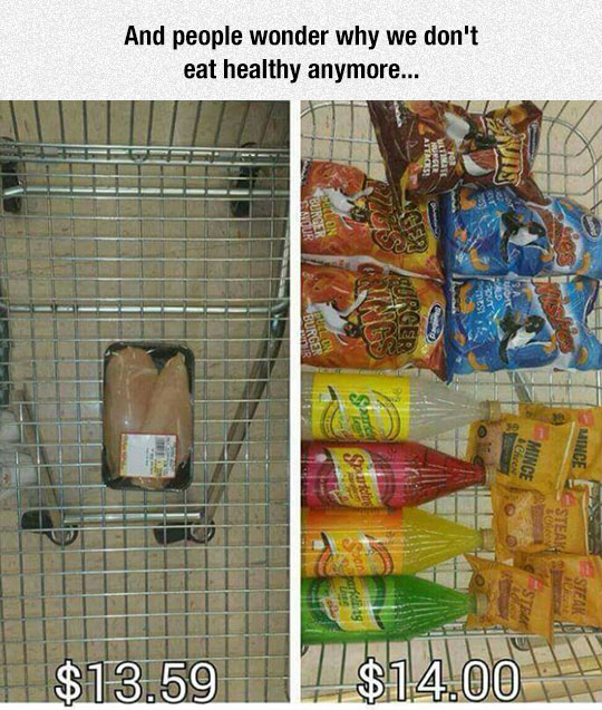 funny pics, healthy food vs junk food prices