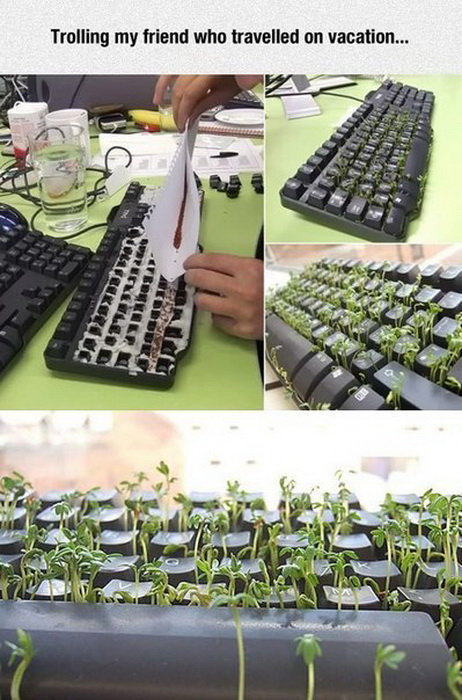 pranks, office prank, lol, funny pics