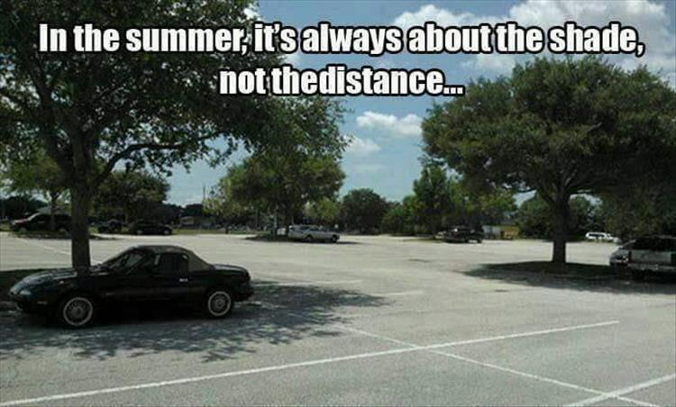 funny pics, summer humor, drivers can relate