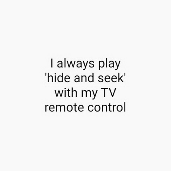 funny pics, lol pics, hide-n-seek, remote humor