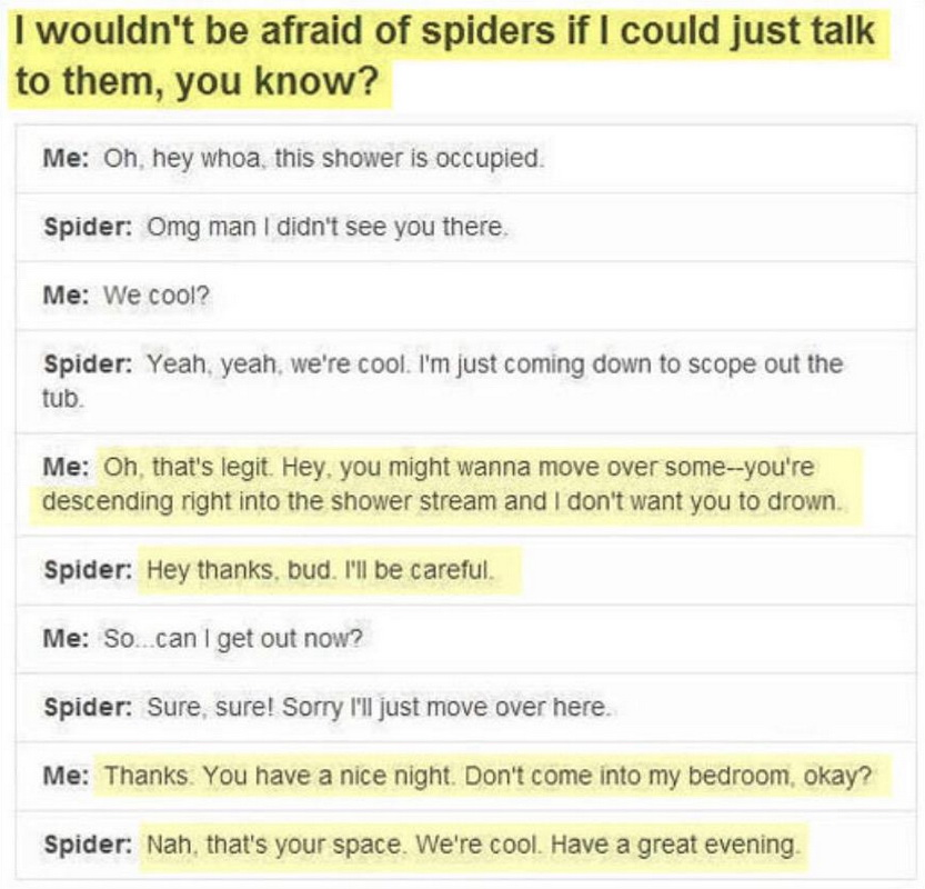 funny pics, lol pics, spiders humor, spiders jokes, if spiders could talk