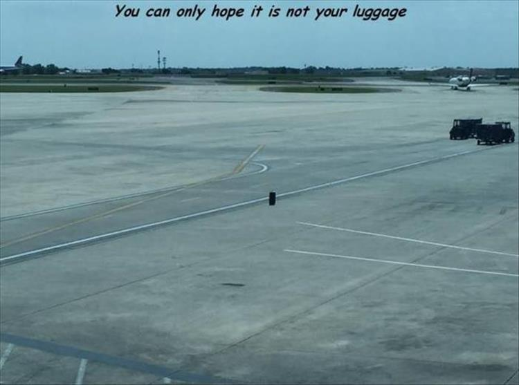 funny pics, lol pics, lost luggage, fingers crossed, bad luck