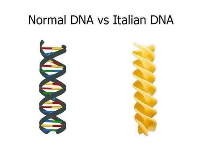 normal vs Italian dna