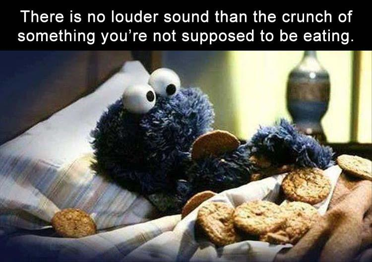 funny pics, lol pics, cookie monster, diet humor