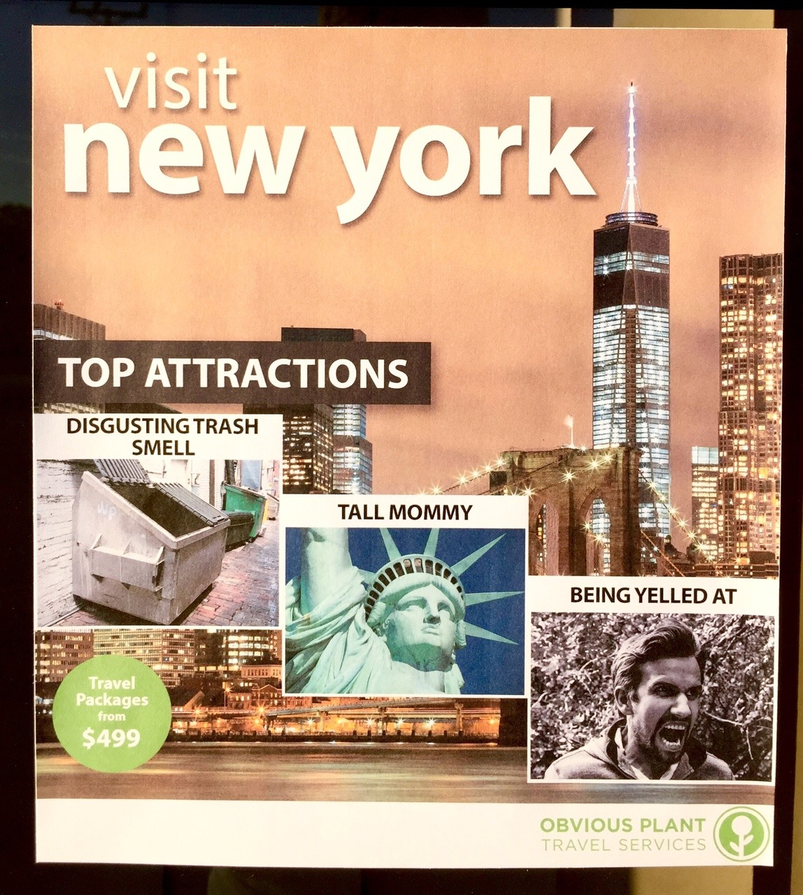 Fake State Tourism Flyers