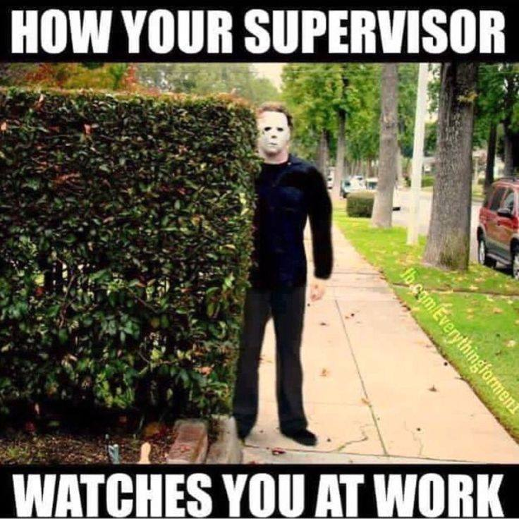 funny pics, lol pics, work humor, supervisor at work