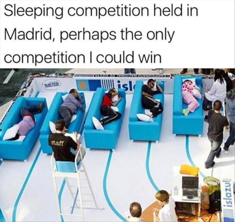 funny pics, lol pics, sleeping contest, where can i sign up