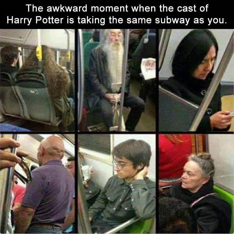 funny pics, lol pics, harry potter crew, harry potter humor, subway