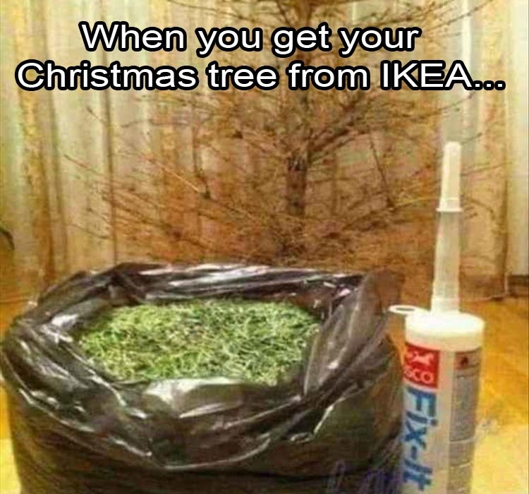 funny pics, lol pics, ikea humor, Christmas tree jokes