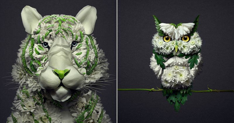 animal-portraits-made-from-flowers-raku-inoue-5